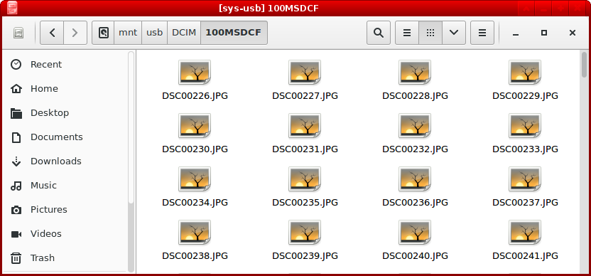 exFAT on sys-usb on Qubes-OS 3 2 (Sony RX100V picture
